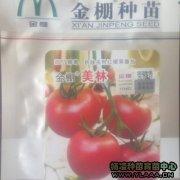 金棚美林番茄苗