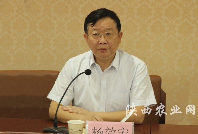 全省农村能源管理及技术培训班在千阳县开班-陕西农业网