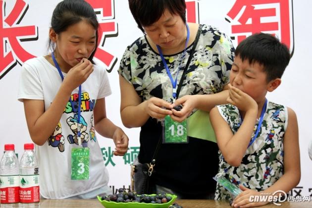 长安葡萄开园仪式举行 1.4万亩葡萄等你来摘-陕西农业网