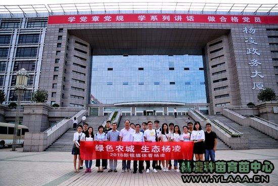 新锐媒体看杨凌:科技引领产业发展 品牌助力农