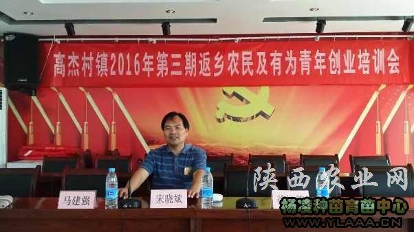 陕北红枣产业技术助红枣可持续发展