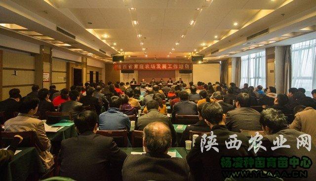 全省家庭农场发展工作培训班在华州区举办