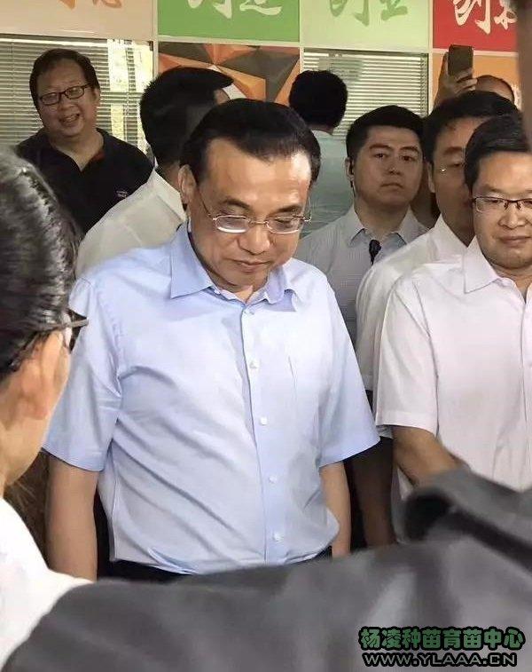 7月10日上午,中共中央政治局常委、国务院总理